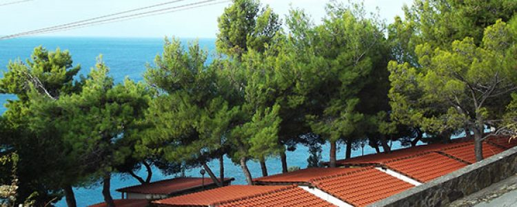 Group holidays in Cilento in Palinuro (SA)